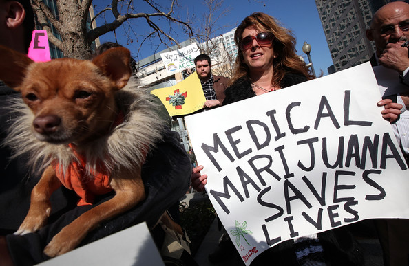 cannabis-activists