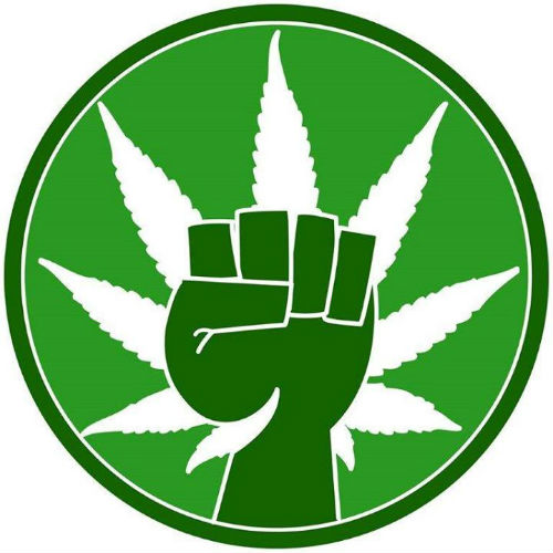 Alabama marijuana rally