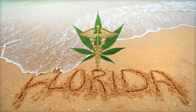 Medical Recreational Marijuana News In Florida - What is the time now in florida