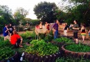 Lawsuit Filed over SWAT Raid on Texas Tomato Farm in Search of Marijuana