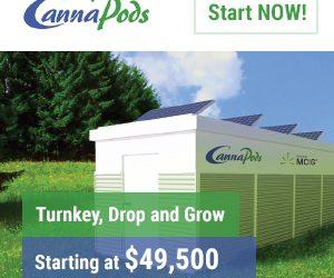 modular cannabis grow rooms