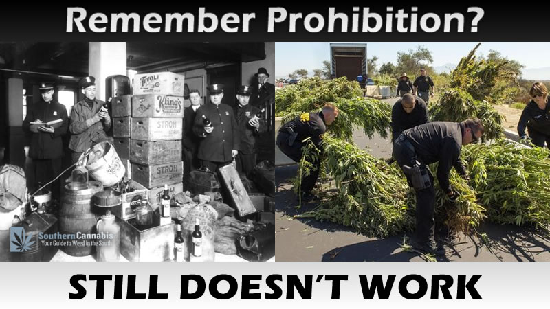 marijuana alcohol prohibition similarities