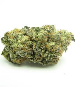 girlscout cookies strain