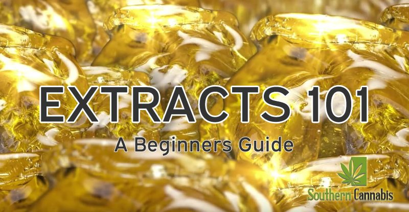 Shatter? Budder? Wax? RSO? Your guide to cannabis extracts
